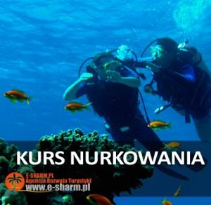 E-SHARM PL Kurs nurkowania Sharm el Sheikh