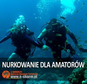 E-SHARM PL Nurkowanie dla amatorów Sharm el Sheikh