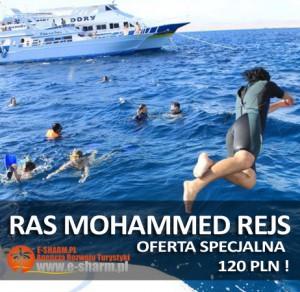 E-SHARM PL Rejs Park Narodowy Ras Mohammed