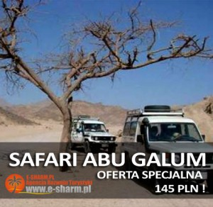 E-SHARM PL Safari jeepami Abu Galum