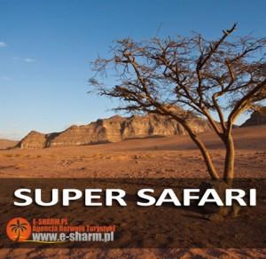 E-SHARM Wycieczka Super Safari Kolorowy Kanion
