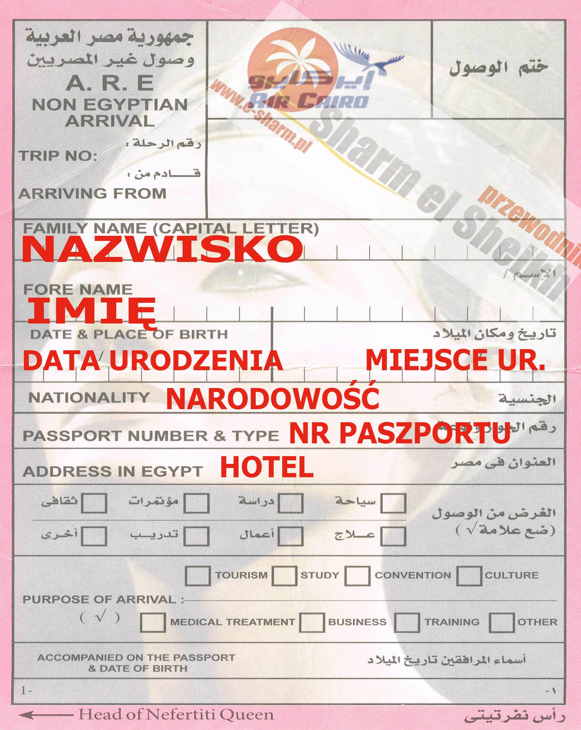 wiza egipska